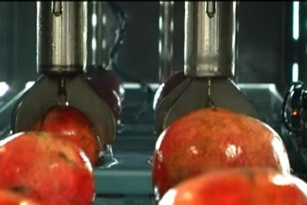 zumo de granada, prensado Granavida®